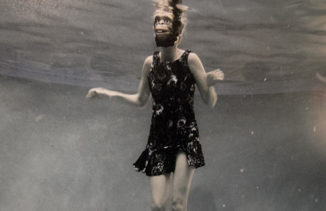 Moby has a painterly style with his photos. Often using masks to put animus in the absurd.